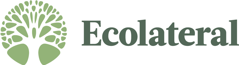 Ecolateral Eco Stores